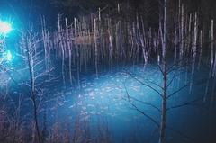ライトアップ青い池-5.JPG
