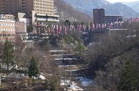 定山渓・鯉のぼり-高山橋2.JPG