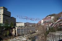 定山渓・鯉のぼり-月見橋1.JPG