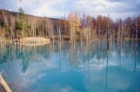 青い池-2.JPG