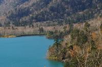 オコタンペ湖3.JPG