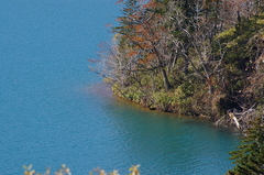 オコタンペ湖6.JPG