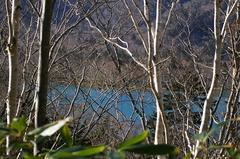 オコタンペ湖5.JPG