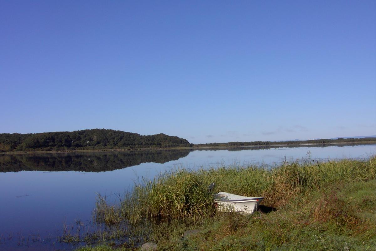 釧路湿原、湖面静かな達古武湖