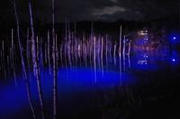 ライトアップ青い池-2.JPG