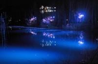 ライトアップ青い池-3.JPG