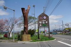 二十間道路桜並木道路案内.JPG