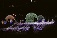 札幌大通り公園イリュミネーションハッピーサークル.JPG