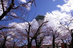 五稜郭タワー.JPG