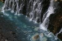 白ひげの滝-1.JPG