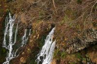 白ひげの滝-3.JPG