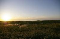 石狩市はまなすの丘公園-14JPG