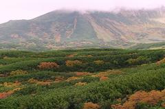 紅葉の旭岳.JPG