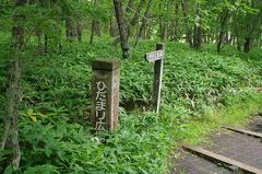 釧路市湿原「ひだまり広場」.JPG