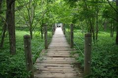 釧路市湿原「つり橋」振返り.JPG