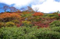 銀泉台第一花園2.JPG