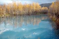 青い池-1.JPG