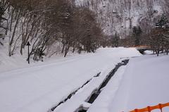 アシリベツの滝への道.JPG