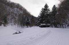 アシリベツの滝への駐車場からの道路.JPG