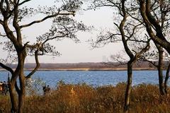 ウトナイ湖.jpeg
