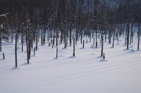 雪景色の「青い池」.JPG