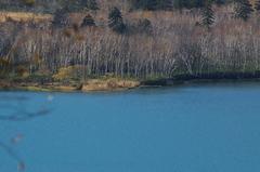 オコタンペ湖8.JPG