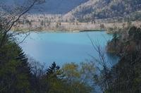 オコタンペ湖1.JPG
