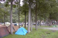 丸瀬布森林公園キャンプ場
